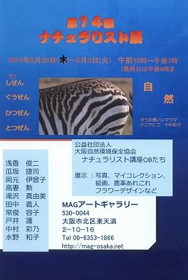 ファイル 289-1.jpg